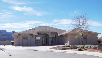 Alamogordo Single Family Home For Sale: 785 Desert Hills Dr