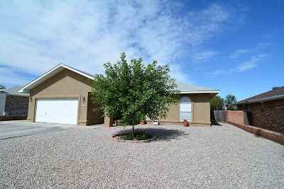 Alamogordo NM Single Family Home For Sale: $174,900