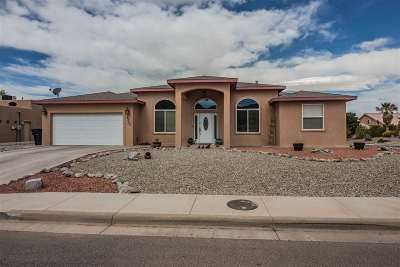 Alamogordo Single Family Home For Sale: 2309 Saguaro Lp