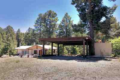 Cloudcroft Single Family Home For Sale: 41 James Canyon Hwy
