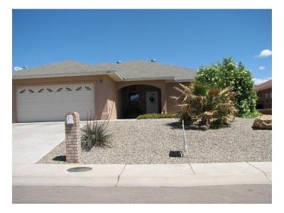 Alamogordo NM Single Family Home For Sale: $191,500