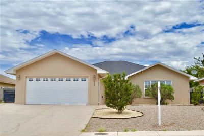 Alamogordo NM Single Family Home For Sale: $177,500