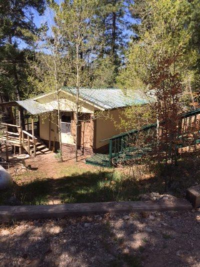 Cloudcroft Single Family Home For Sale: 52 Silver Cloud Dr
