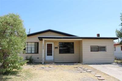 Alamogordo Single Family Home For Sale: 1306 Catalina Ln