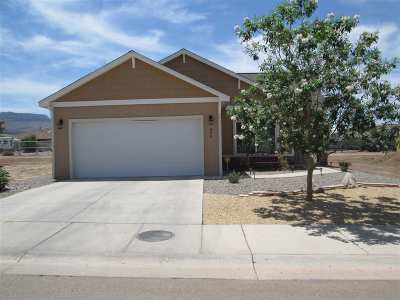 Alamogordo Single Family Home For Sale: 866 Valencia