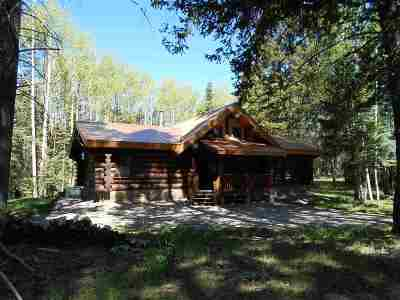 Cloudcroft Single Family Home For Sale: 696 Karr Canyon Rd
