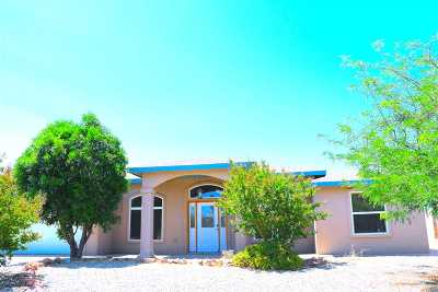Alamogordo Single Family Home For Sale: 328 Camino Real