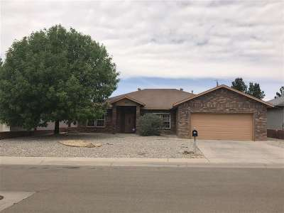 Alamogordo Single Family Home For Sale: 3703 Ironwood Ave