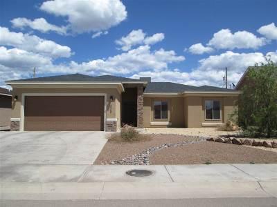 Alamogordo Single Family Home For Sale: 305 Coronado Dr