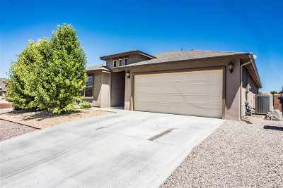 Alamogordo Single Family Home For Sale: 363 Bosque