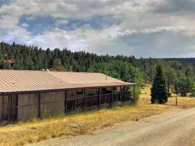 Cloudcroft Single Family Home For Sale: 7 Navajo