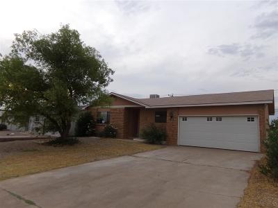 Alamogordo Single Family Home For Sale: 609 Mercury Av
