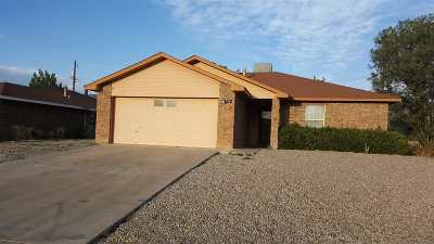 Alamogordo Single Family Home For Sale: 717 Candlewood