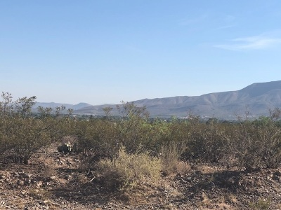 Alamogordo NM Residential Lots & Land For Sale: $30,000