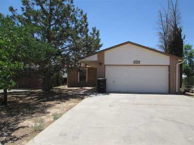 Alamogordo Single Family Home For Sale: 1389 Lindberg Av