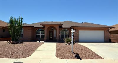 Alamogordo NM Single Family Home For Sale: $259,500