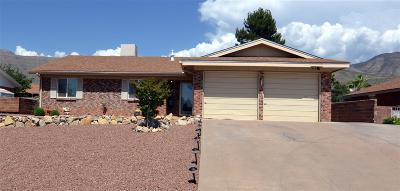Alamogordo Single Family Home For Sale: 1402 Scenic Dr