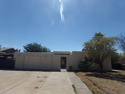 Alamogordo NM Single Family Home For Sale: $69,000
