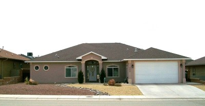 Alamogordo Single Family Home For Sale: 268 Palo Duro