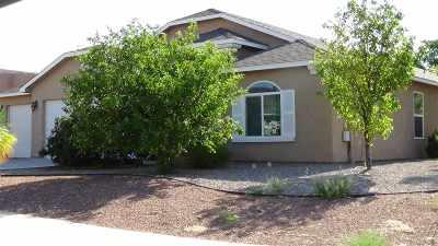 Alamogordo Single Family Home For Sale: 211 Bosque St