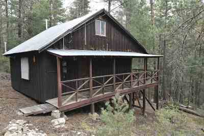 Cloudcroft Single Family Home For Sale: 9 Squirrel Run