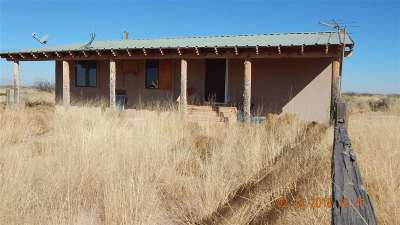 Tularosa Single Family Home For Sale: 319 Tulie Gate Rd