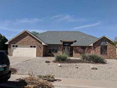 Alamogordo Single Family Home For Sale: 723 Eagle Dr