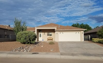Alamogordo Single Family Home For Sale: 448 Bandolier