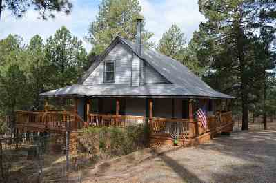 Mayhill Single Family Home For Sale: 11 White Tail Run