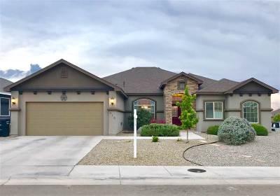 Alamogordo Single Family Home For Sale: 812 Shiprock