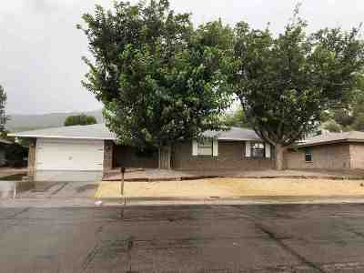 Alamogordo Single Family Home For Sale: 600 Sundial Av
