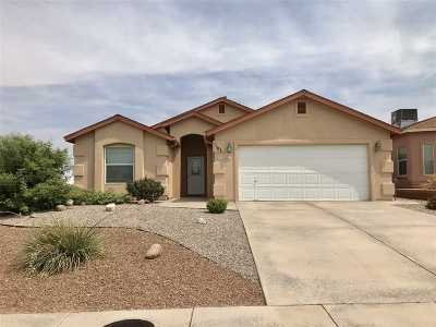 Alamogordo Single Family Home For Sale: 1101 Hermoso El Sol