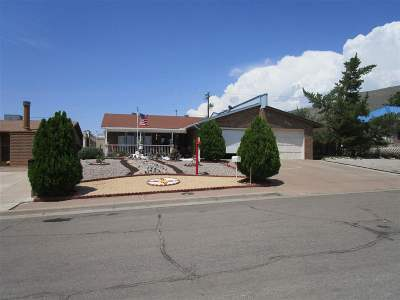 Alamogordo Single Family Home For Sale: 2327 Nevada Dr