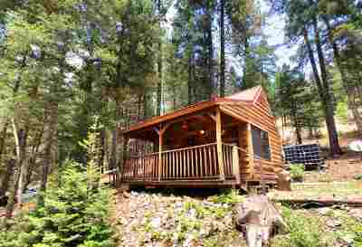 Cloudcroft Single Family Home For Sale: 7 Big Foot Rd