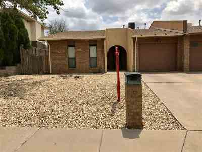 Alamogordo Single Family Home For Sale: 2314 Nevada Dr