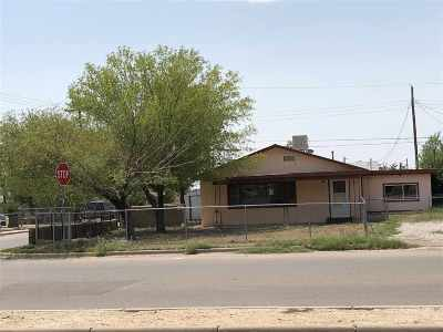 Alamogordo Single Family Home For Sale: 2501 Pecan Dr