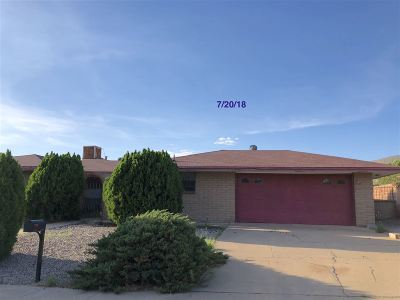 Alamogordo NM Single Family Home For Sale: $106,900