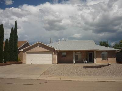 Alamogordo NM Single Family Home For Sale: $159,900