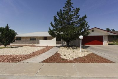 Alamogordo Single Family Home For Sale: 1809 Juniper Dr