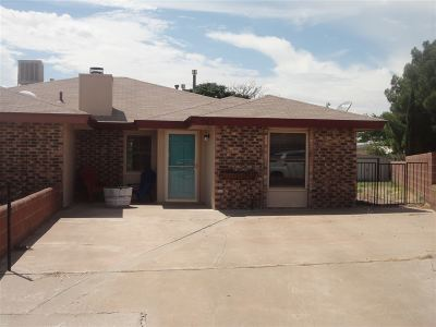 Alamogordo NM Single Family Home For Sale: $114,900