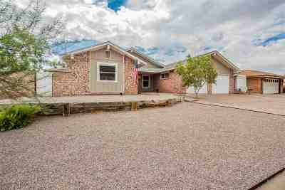 Alamogordo Single Family Home For Sale: 401 Sunbeam Av