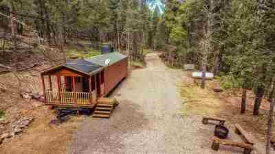 Cloudcroft Single Family Home For Sale: 54 Scenic Loop