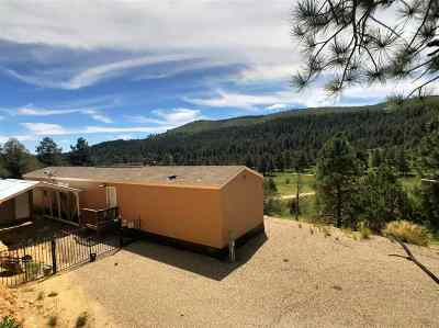 Mayhill Single Family Home For Sale: 3015 Hwy 82