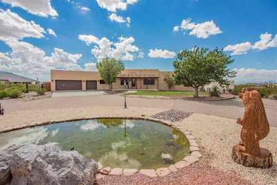 Alamogordo Single Family Home For Sale: 42 S Florida Av