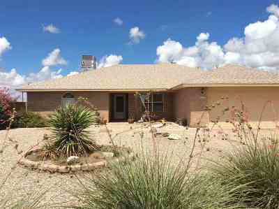 Alamogordo Single Family Home For Sale: 1013 San Miguel St