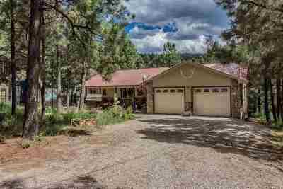 Cloudcroft Single Family Home For Sale: 7 E Groesbeeck Rd