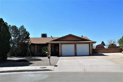 Alamogordo Single Family Home Uc W/Contingency: 3005 Kiowa Ct