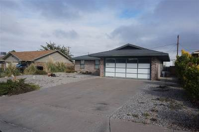Alamogordo Single Family Home For Sale: 2321 Camino Del Rey