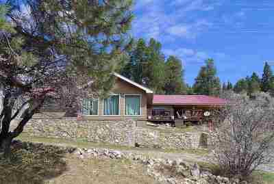 Cloudcroft Single Family Home For Sale: 802 Burro Ave