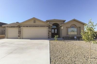 Alamogordo Single Family Home For Sale: 848 Sky Ranch